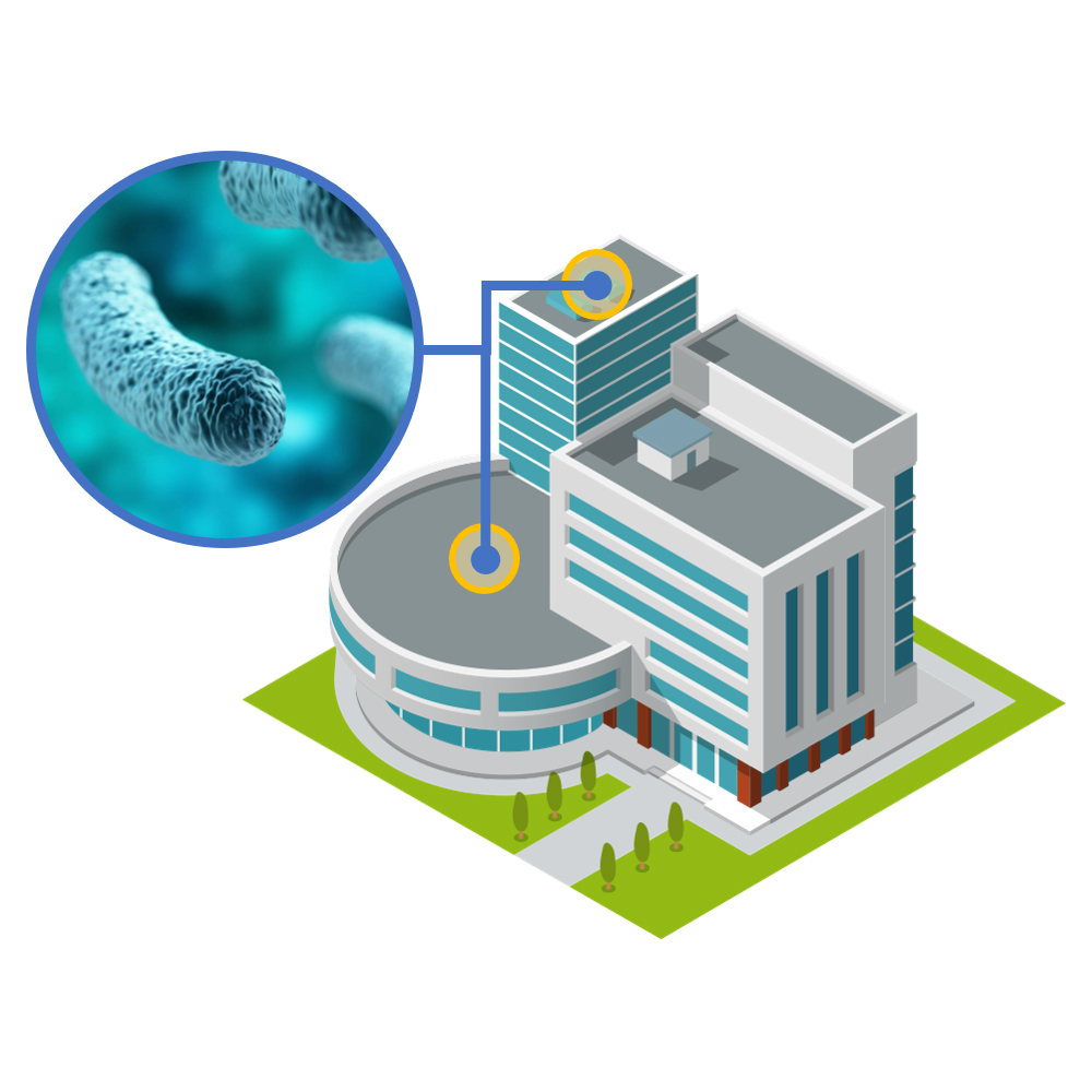Legionella Managing The Risk in Buildings